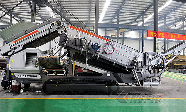 Mexico 150 th Crawler mobile plant